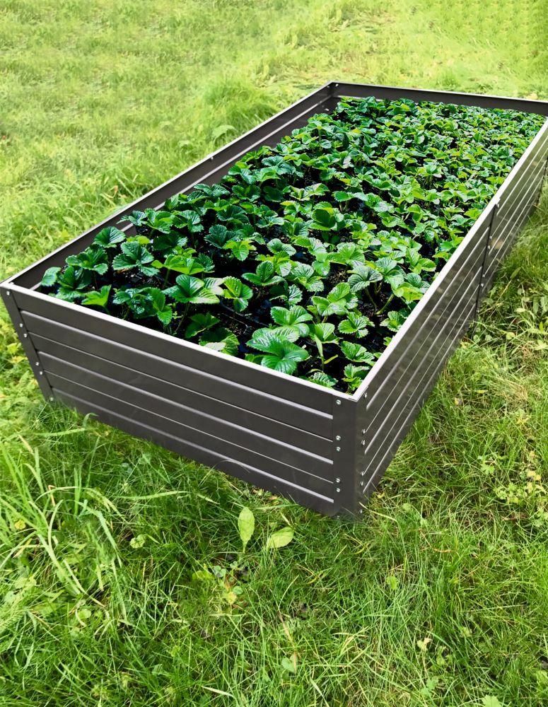 Hochbeet 01 gegalvaniseerd met poedercoating - Afmetingen: 150 x 75 cm (L x B)